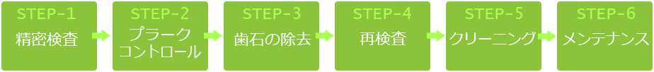 歯周病治療 STEP-1~STEP-6